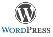 WordPress の [Yoast SEO] プラグインをアップデートしたら「Your homepage cannot be indexed by search engines.」のエラーメッセージが表示される